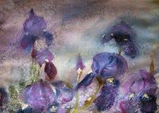 Картина акварели красивых цветков Стоковая Фотография