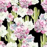 Картина акварели с кактусами и succulents Стоковое фото RF