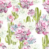 Картина акварели с кактусами и succulents Стоковые Изображения RF