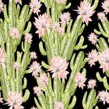 Картина акварели с кактусом Стоковое Фото
