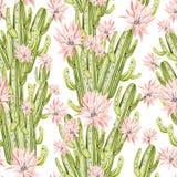 Картина акварели с кактусом Стоковое Изображение