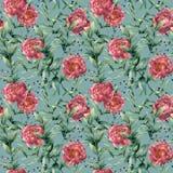Картина акварели с толстыми евкалиптом, пионом и ягодами Рука покрасила флористические ветви с листьями, изолированными цветками Стоковые Фото