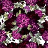 Картина акварели с цветками пиона Стоковое фото RF