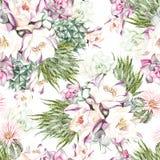 Картина акварели с succulents Стоковое Фото
