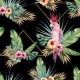 Картина акварели тропическая безшовная с попугаями Стоковая Фотография