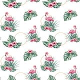Картина акварели тропическая безшовная с фламинго Стоковая Фотография