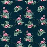 Картина акварели тропическая безшовная с фламинго Стоковое Изображение