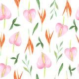 Картина акварели флористическая безшовная Тропические цветки иллюстрация штока
