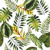 Картина акварели безшовная Заводы и цветки лета тропические Стоковая Фотография RF