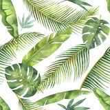 Картина акварели безшовная при тропические листья и ветви изолированные на белой предпосылке иллюстрация вектора
