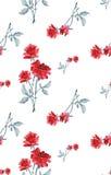 Картина акварели безшовная с букетами красных роз на белой предпосылке Стоковое Фото