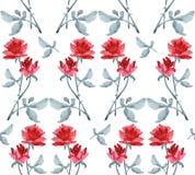 Картина акварели безшовная с гирляндами красных роз и покрашенных прокладок серого цвета и красного цвета и серого цвета на белой Стоковые Фотографии RF