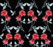 Картина акварели безшовная с гирляндами красных роз на черной предпосылке Стоковые Фото