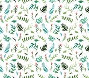 Картина акварели безшовная с глубокими ыми-зелен папоротниками, листьями сини и розовыми цветками иллюстрация штока
