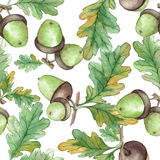 Картина акварели безшовная с жолудями Стоковые Изображения