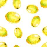 Картина акварели безшовная с лимонами Иллюстрация вектора