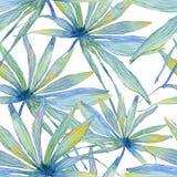 Картина акварели безшовная с листьями ладони Стоковые Фотографии RF
