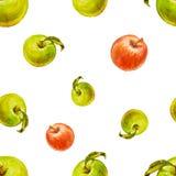 Картина акварели безшовная с красными и зелеными яблоками Иллюстрация штока