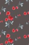 Картина акварели безшовная с красными розами на серой предпосылке Стоковая Фотография RF