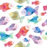 Картина акварели безшовная с рыбами и морскими водорослями Стоковая Фотография