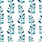 Картина акварели безшовная Флористическая предпосылка краски руки вектора Голубые хворостины, листья, листва на белой предпосылке Стоковая Фотография RF