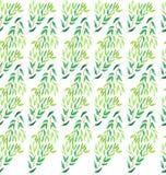 Картина акварели ветвей дерева Стоковое Изображение RF