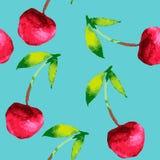 Картина акварели вишни Стоковая Фотография