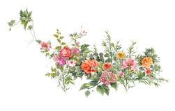 Картина акварели выходит и цветок, на белую предпосылку Стоковая Фотография RF