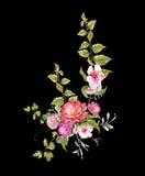 Картина акварели выходит и цветок, на темную предпосылку Стоковые Изображения RF