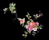 Картина акварели выходит и цветок, на темную предпосылку Стоковая Фотография RF