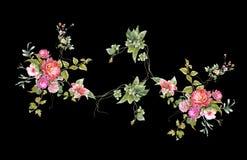 Картина акварели выходит и цветок, на темную предпосылку Стоковое Изображение RF
