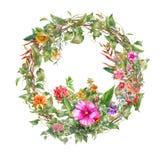 Картина акварели выходит и цветок, с кругом на белую предпосылку Стоковые Фото