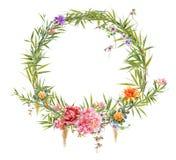 Картина акварели выходит и цветок, с кругом на белую предпосылку Стоковое Фото
