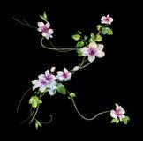 Картина акварели листьев и цветка Стоковые Фото