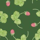 Картина акварели клубники весны безшовная Стоковые Изображения RF