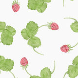 Картина акварели клубники весны безшовная Стоковое Изображение
