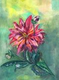 Картина акварели оранжевой предпосылки роз Стоковая Фотография RF