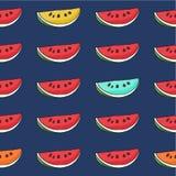 Картина арбуза безшовной нарисованная рукой Стоковое Изображение