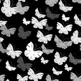 картина бабочек безшовная Стоковое Изображение