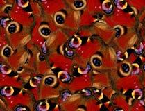 Картина бабочки павлина безшовная Стоковое Изображение RF
