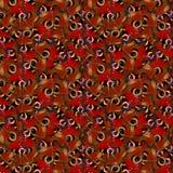 Картина бабочки павлина безшовная Стоковое Изображение