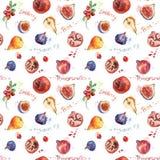 картина безшовная Красочный плодоовощ акварели Стоковые Изображения RF