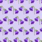 картина безшовная Милая картина в цветке колоколы пурпуровые предпосылка светлоая-фиолетов ditsy флористическое иллюстрация штока