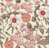 картина безшовная Реалистические изолированные цветки Винтажный вектор гравировки чертежа hibisc primavera гибискуса heliotrope п Стоковое Изображение RF
