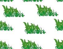 картина безшовная Тропическая ладонь выходит предпосылка Листья банана Предпосылка вектора Экзотическая текстура цветков флористи Стоковая Фотография