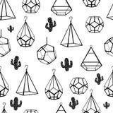 картина безшовная Terrarium и кактус вектор Концепция черных кактусов с terrariums на белой предпосылке иллюстрация вектора