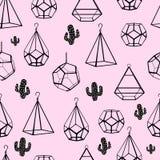 картина безшовная Terrarium и кактус вектор Концепция черных кактусов с terrariums на розовой предпосылке иллюстрация вектора