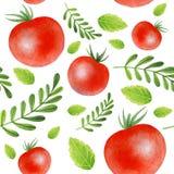 Картина больших красных томатов с листьями на белой предпосылке иллюстрация штока