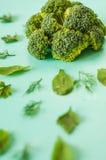 Картина брокколи, шпината, фенхеля, вегетарианца, здоровой концепции еды Стоковое фото RF