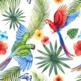 Картина вектора акварели безшовная при попугаи, тропические листья и цветки изолированные на белой предпосылке иллюстрация штока